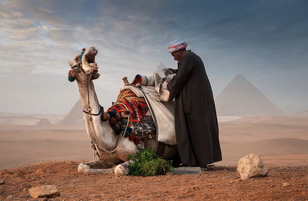 A local desert guide taking out his tea preparations from his saddle bags.   Cairo, Egypt, 2010