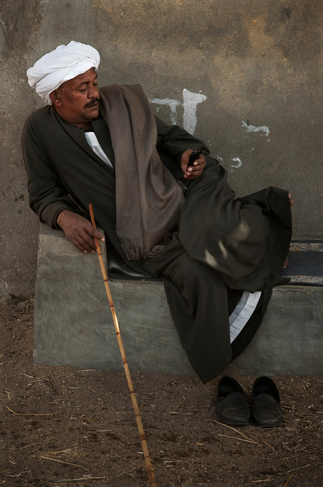 Birqash camel market.<br /> <br /> Cairo, Egypt, 2010.