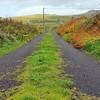 Road or footpath?