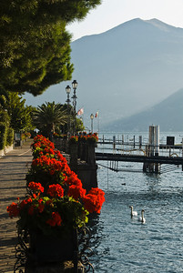 Beautiful morning along the walkway in the main square of Menaggio.
