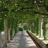 Green Archway