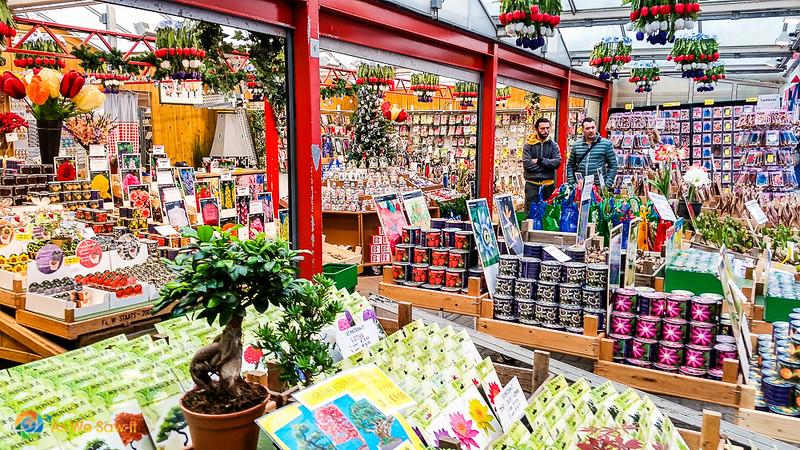 Bulbes de fleurs sur l'affichage dans un magasin à Bloemarkt marché aux fleurs flottant