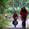 Bikers and walkers share the trail