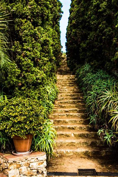 Path in Marimurtra botanical garden
