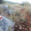 Lycian way trail marking