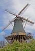 Keukenhof Gardens, Amsterdam, Holland, #0348