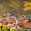 Changing colors, Village and Grapes. Germany