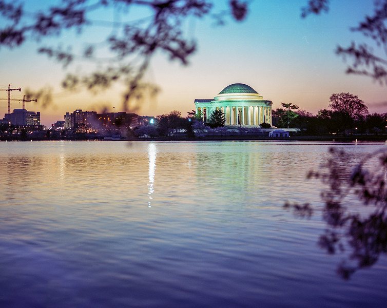 Cherry blossoms at sunrise. Tidal Basin. DC. Medium format film. Portra. Apr 2018.