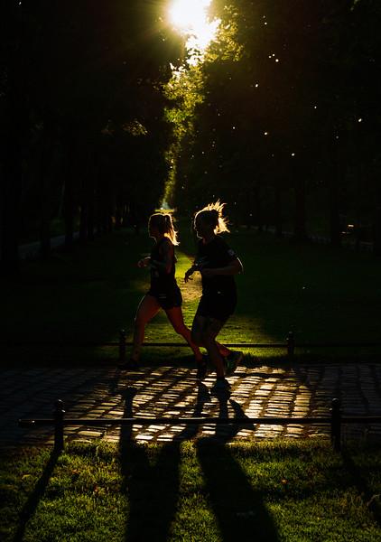 Recreation at Tiergarten during Sunset