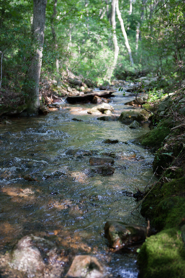 The creek. July 2015. Digital. Trout Pond Recreation Area, WV.