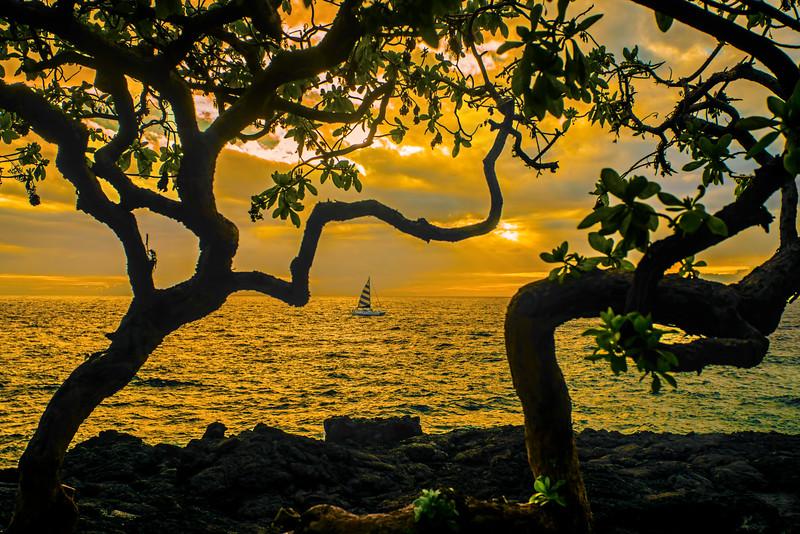 Sunset over Sail, #1068