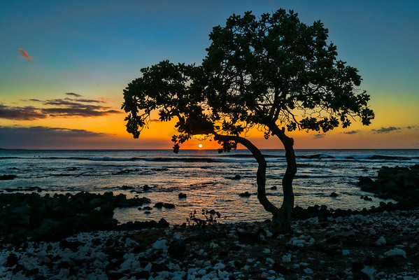 Hawaiian Sunset, #1469