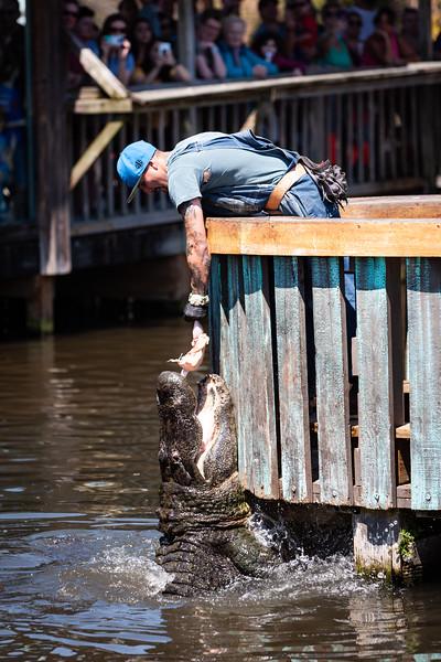 Gator Jumparoo at Gatorland. Digital. March 2019.