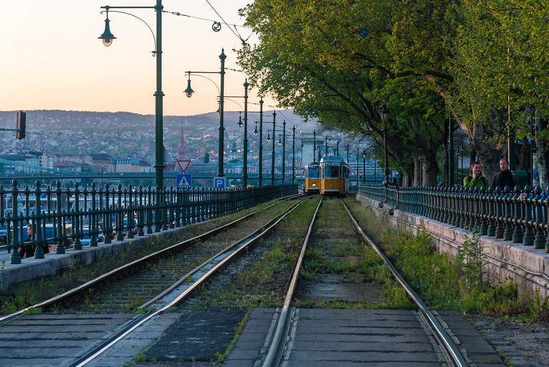 Trams running parallel to river Danube, Petőfi tér, Budapest, Hungary.