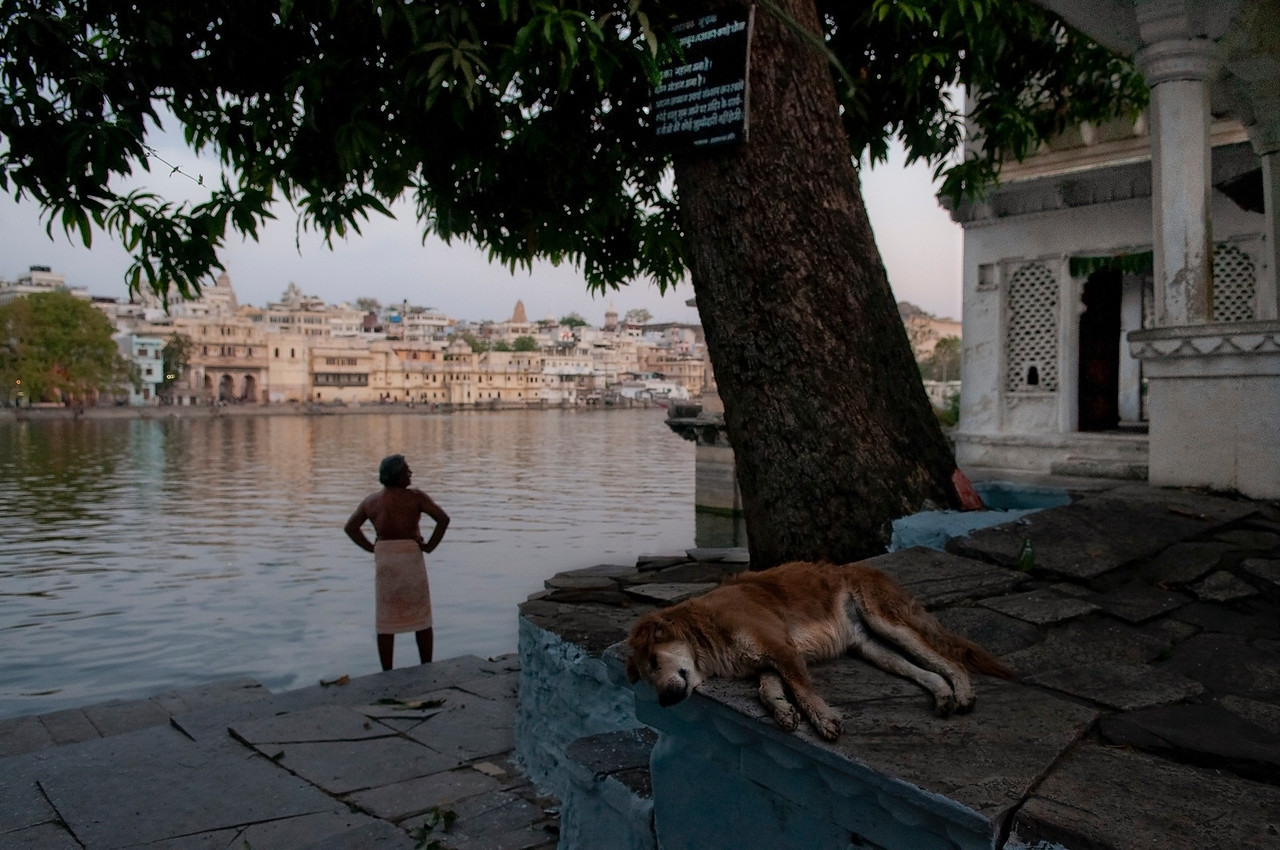 Man stands and looks out into Lake Pichola after washing himself in the lake. <br /> <br /> Udaipur, Rajasthan, India, 2011.