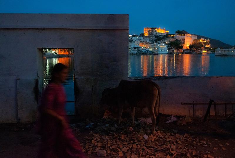 Street scene.<br /> <br /> Udaipur, Rajasthan, India, 2011.