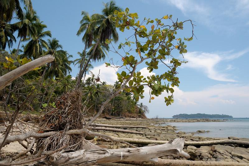 Jolly Buoy island, A&N, Andaman & Nicobar, Islands, India
