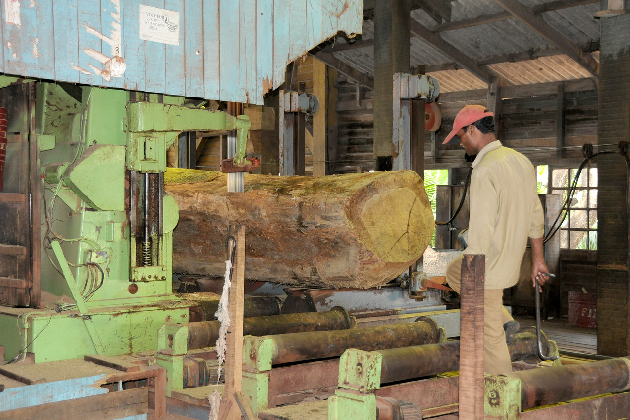 Chatham Saw Mill in Port Blair, A&N (Andaman & Nicobar) Islands.
