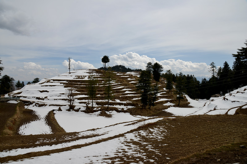 Snowfall in Kufri. 16 km from Shimla at a height of 8,600 ft, Kufri is the local winter sports centre, and it also has a small zoo. Shimla is the capital city of the Indian state of Himachal Pradesh, located in northern India at an elevation of 7,200 ft.
