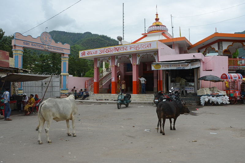 Temple in Rishikesh, Uttaranchal, India