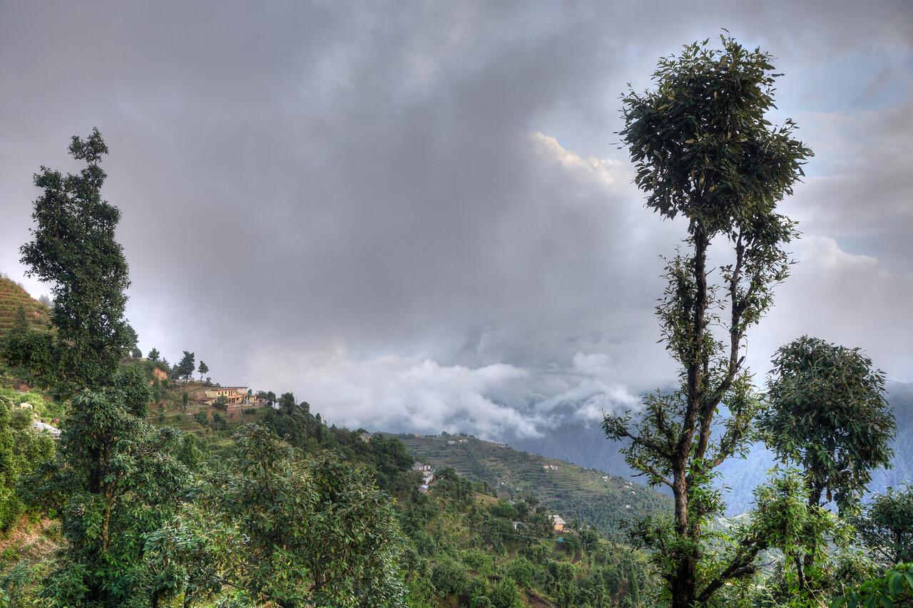 Kanatal, Uttaranchal, India