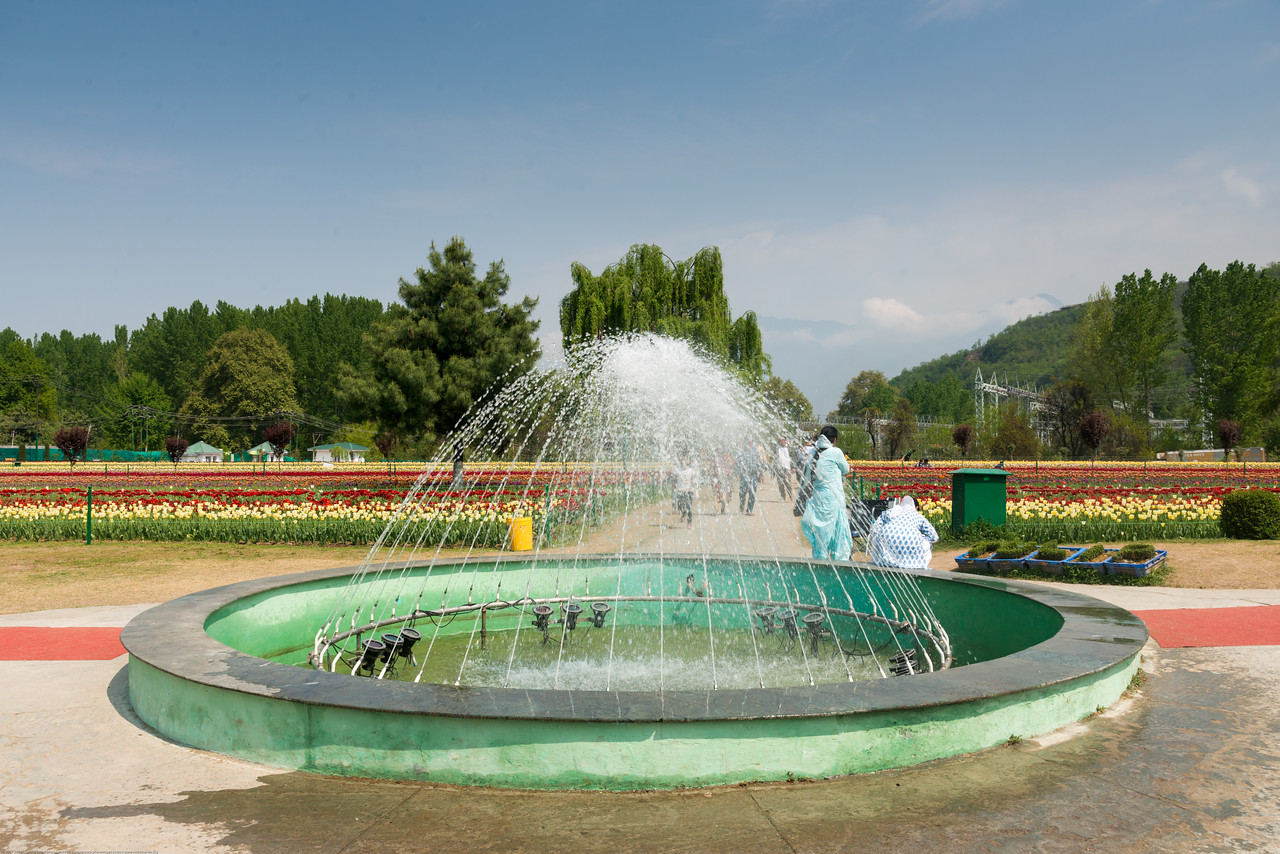 Tulip Garden fountain, Srinagar, Jammu and Kashmir, India. Asia's Largest, with 20 lakh tulips of 46 varieties spread over 30 hectares in the foothills of the snow-clad Zabarwan range.