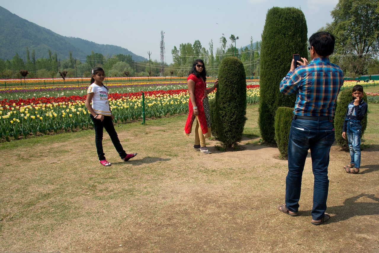 Visitors taking pictures. Tulip Garden, Jammu and Kashmir, India. Asia's Largest, with 20 lakh tulips of 46 varieties spread over 30 hectares in the foothills of the snow-clad Zabarwan range.