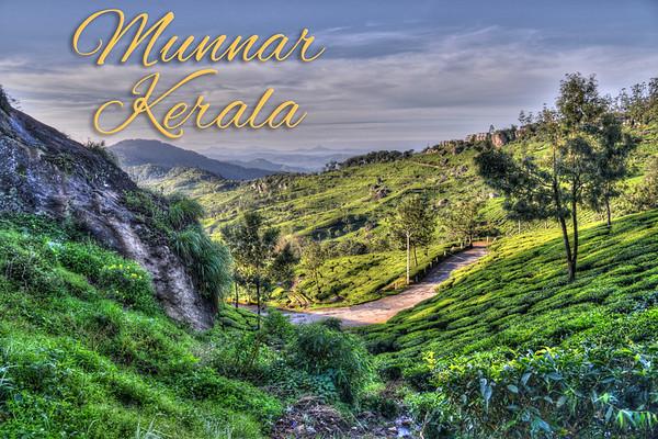 India, Kerala, Munnar