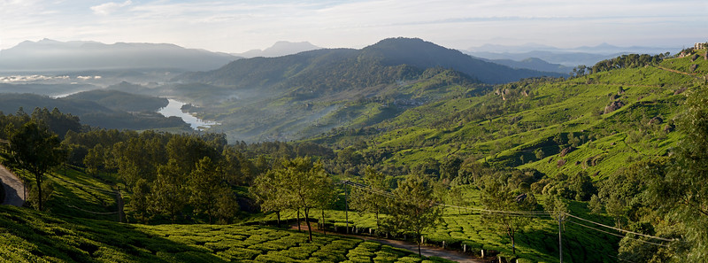 "Panoramic view at Munnar. Munnar is an attractive destination with the world's best and renowned tea estates. There are more than 50 tea estates in and around Munnar. Most of the plantations are taken over by the Tata Group. Some of the major tea estates in Munnar include Harrison Malayalam, AVT tea, Michael's tea, Brooke Bond etc. It is one of the biggest centers of tea trade in India. Tea or Chai is the most widely drunk beverage in the whole world. The tea plant, Camellia Sansis, is a cultivated variety of a Tea planttree that has its origins in an area between India and China. <br /> <br /> Munnar ( മുന്നാർ ) is situated on the Kannan Devan Hills ( KDH ) Village in Devikulam taluk. Munnar is a famous hill station on the Western Ghats of India. A range of mountains situated in the Idukki district of the Indian state of Kerala. The name Munnar means ""three rivers"", referring to the town's strategic location at the confluence of the Madhurapuzha, Nallathanni and Kundaly rivers."