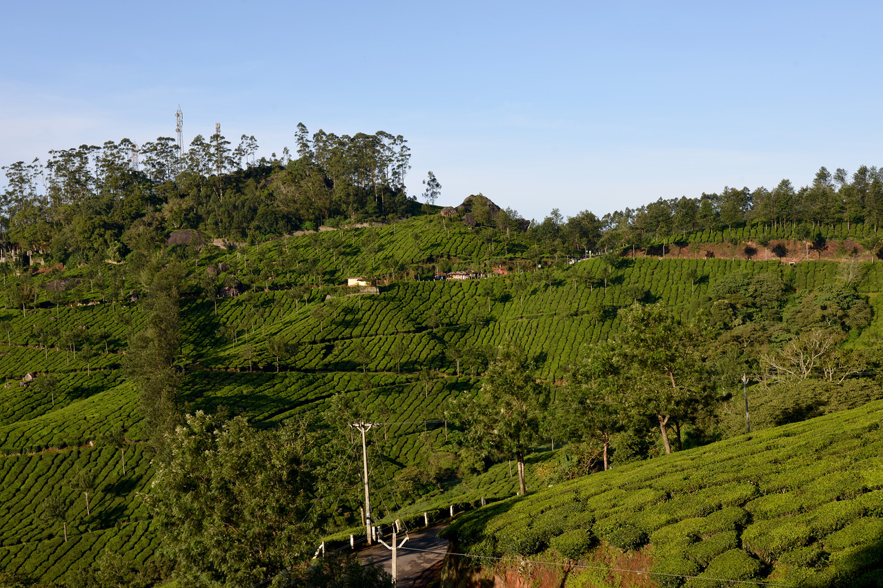 """Munnar ( മുന്നാർ ) is situated on the Kannan Devan Hills ( KDH ) Village in Devikulam taluk. Munnar is a famous hill station on the Western Ghats of India. A range of mountains situated in the Idukki district of the Indian state of Kerala. The name Munnar means """"three rivers"""", referring to the town's strategic location at the confluence of the Madhurapuzha, Nallathanni and Kundaly rivers."""