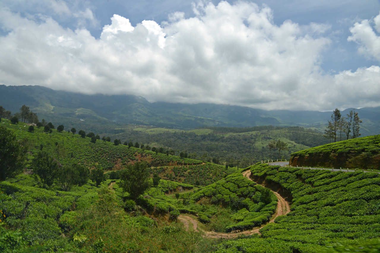 "Munnar ( മുന്നാർ ) is situated on the Kannan Devan Hills ( KDH ) Village in Devikulam taluk. Munnar is a famous hill station on the Western Ghats of India. A range of mountains situated in the Idukki district of the Indian state of Kerala. The name Munnar means ""three rivers"", referring to the town's strategic location at the confluence of the Madhurapuzha, Nallathanni and Kundaly rivers."