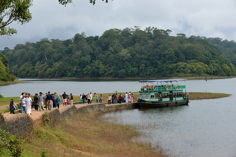 Boats take visitors onto the lake at the National Park. Thekkady (Idukki district) in Kerala is the location of the Periyar National Park, which is an important tourist attraction in India. Thekkady sanctuary is located near the Kerala-Tamil Nadu state border and is famous for its dense evergreen, semi-evergreen, moist deciduous forests and savanna grass lands. It is home to herds of elephants, sambar, tigers, gaur, lion-tailed Macaques and Nilgiri Langurs.<br /> <br /> The Periyar Wildlife Sanctuary is spread across 777 km (300 sq mi), of which 360 km (140 sq mi) is thick evergreen forest. This wild life sanctuary was declared a Tiger Reserve in 1978. The splendid artificial lake formed by the Mullaperiyar Dam across the Periyar River adds to the charm of the park. Thekkady is also a heaven for natural spices such as black pepper, cardamom, cinnamon and clove.