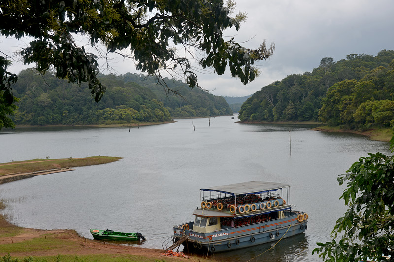 Thekkady (Idukki district) in Kerala is the location of the Periyar National Park, which is an important tourist attraction in India. Thekkady sanctuary is located near the Kerala-Tamil Nadu state border and is famous for its dense evergreen, semi-evergreen, moist deciduous forests and savanna grass lands. It is home to herds of elephants, sambar, tigers, gaur, lion-tailed Macaques and Nilgiri Langurs.<br /> <br /> The Periyar Wildlife Sanctuary is spread across 777 km (300 sq mi), of which 360 km (140 sq mi) is thick evergreen forest. This wild life sanctuary was declared a Tiger Reserve in 1978. The splendid artificial lake formed by the Mullaperiyar Dam across the Periyar River adds to the charm of the park. Thekkady is also a heaven for natural spices such as black pepper, cardamom, cinnamon and clove.