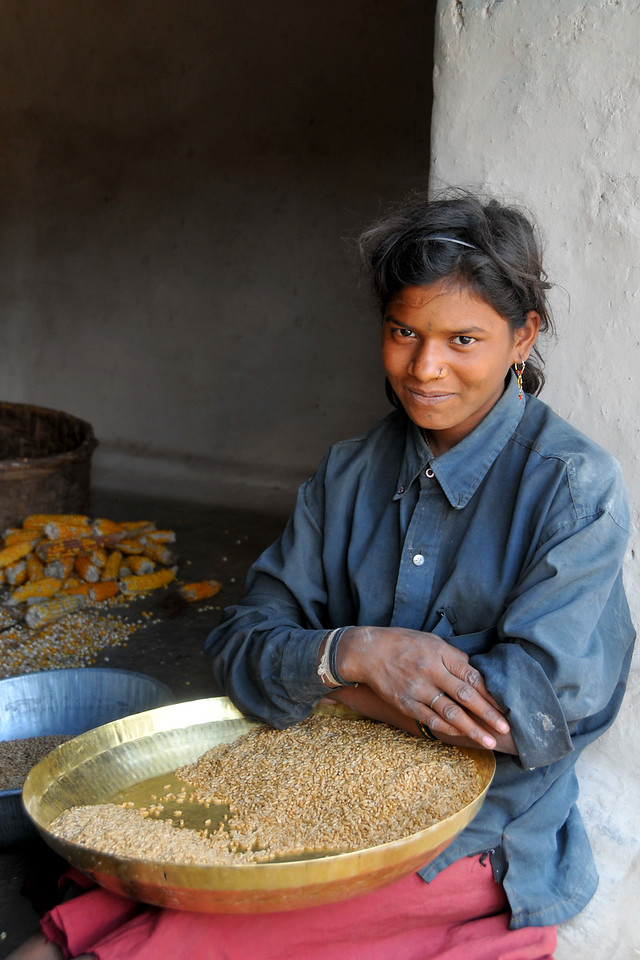 Sorting grain in a village in rural India in the state of Maharashtra.