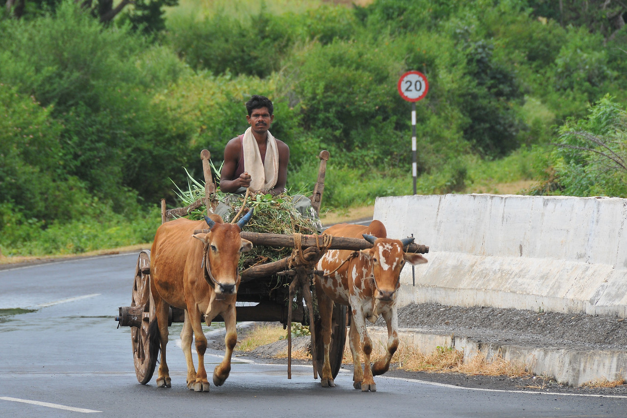 Slow road to progress. Villages in rural India in the state of Maharashtra.