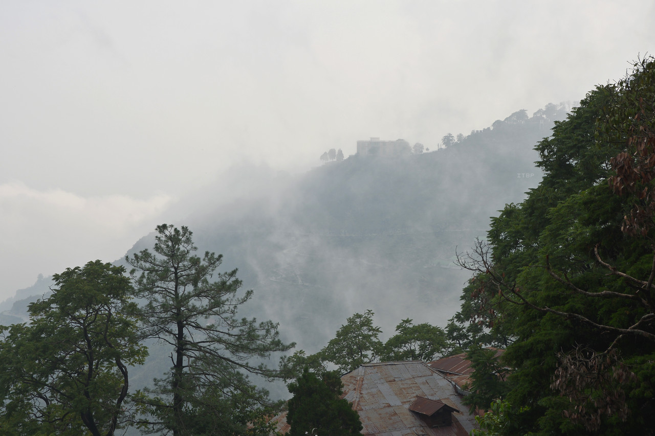 Mist in Mussoorie, Uttaranchal, India