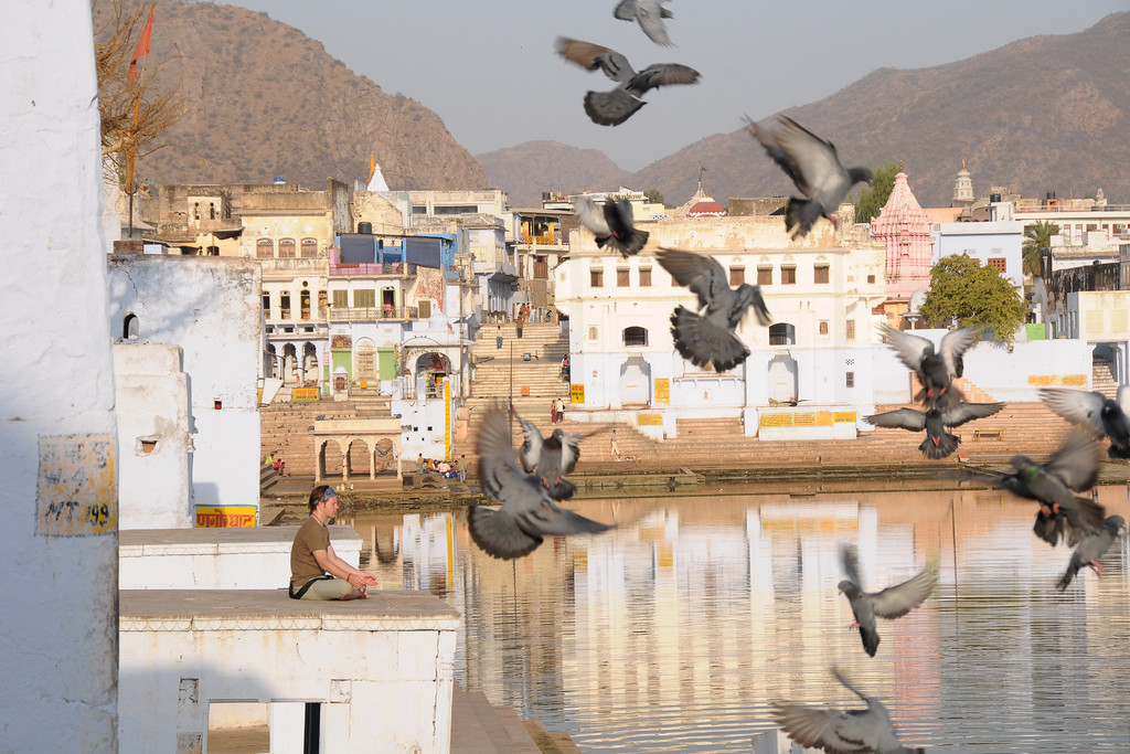 As the free birds fly around, many come to Pushkar to regulate their free mid. For religious purposes and to find peace & spirituality. View of Pushkar Lake from the ghats.<br /> <br /> The town of Pushkar is located 14 km North West of Ajmer. Pushkar is one of the oldest cities of India. It  has in recent years become a popular destination for foreign tourists. Pushkar, Rajasthan, India.