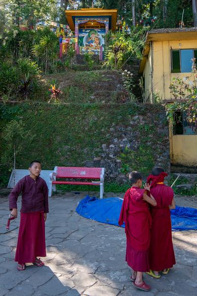 Young monks playing at the monstary/institute.<br /> <br /> Karma Shri Nalanda Institute (करमा श्री नालंदा इंस्टिट्यूट), Dharma Chakra Centre, Rumtek, Sikkim. North East India.