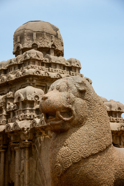 Detailed carving at Panch Pandava Rathas (பன்ச் பாண்டவ ரதாஸ்). Pancha Rathas is a monument complex at Mahabalipuram, on the Coromandel Coast of the Bay of Bengal, in the Kancheepuram district of the state of Tamil Nadu, India. Pancha Rathas is an example of monolithic Indian rock-cut architecture.