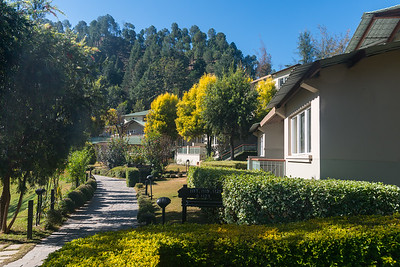 Club Mahindra Binsar Valley Resort  Perched high up in the Kumaon Himalayas, Binsar offers a breathtaking view of the snowy mountain ranges of Panchchuli, Shivling, Chaukhamba, Trishul and Nanda Devi. Nestled amid such beauty is Club Mahindra Binsar Valley.