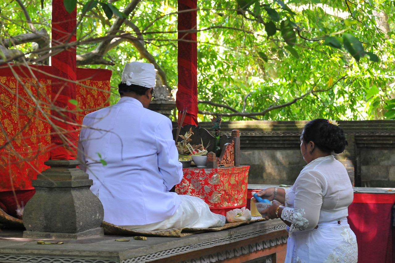 High priest performing the ritual. Ceremony at the Temple in The Ubud Monkey Forest. The Forest is a nature reserve and temple complex in Ubud, Bali. It houses over 200 Crab-eating Macaque (Macaca fascicularis) monkeys. There are four groups of monkeys each occupying different territories in the park. The Sacred Monkey Forest is a popular tourist attraction in Ubud.<br /> <br /> Bali is an Indonesian island with the provincial capital at Denpasar. Lying between Java to the west and Lombok to the east, the island is home to the largest tourist destination in the country and is renowned for its highly developed arts, including dance, sculpture, painting, leather, metalworking and music. What's interesting is that while Indonesia has the world's largest Muslim population, on the island of Bali, 93% of the population is Balinese Hindu and one can find Hinduism in each and every aspect of the life and living.