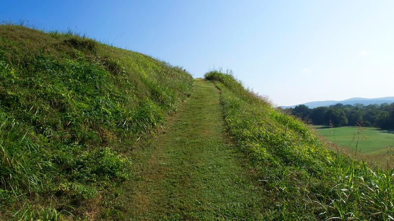 Etowah Indian Mound A