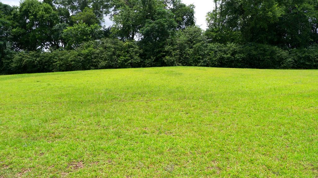 Mound H: Ritual Activity