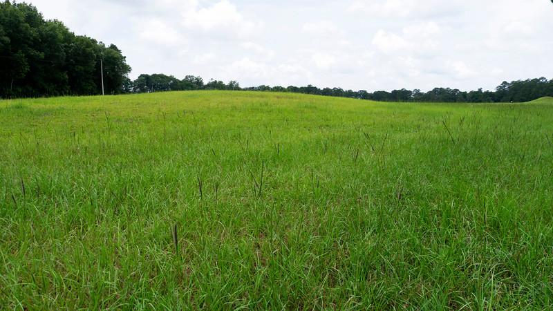 Mound B: The Most Unusual Mound