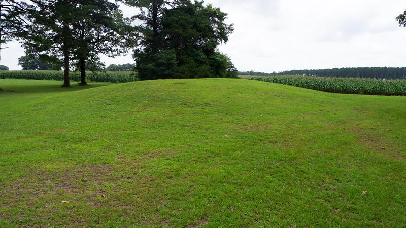 Mound F: Ceremonial Platform