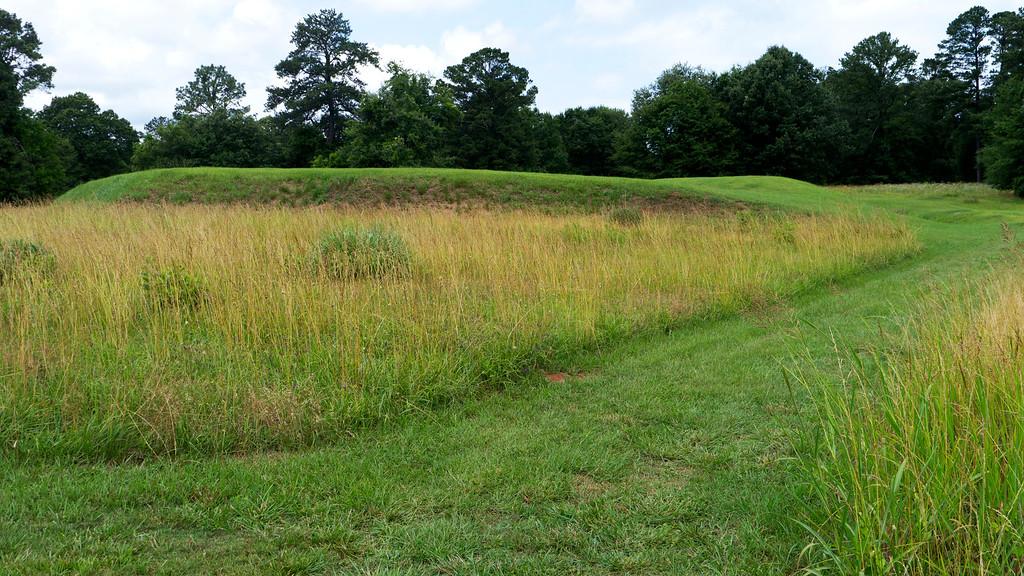 Cornfield Mound 3