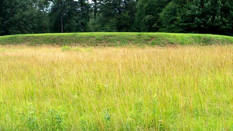 Cornfield Mound 1
