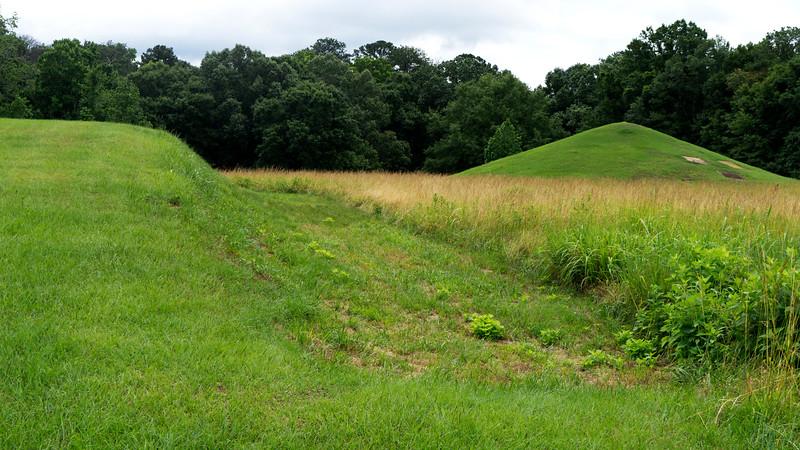Cornfield Mound and Earth Lodge