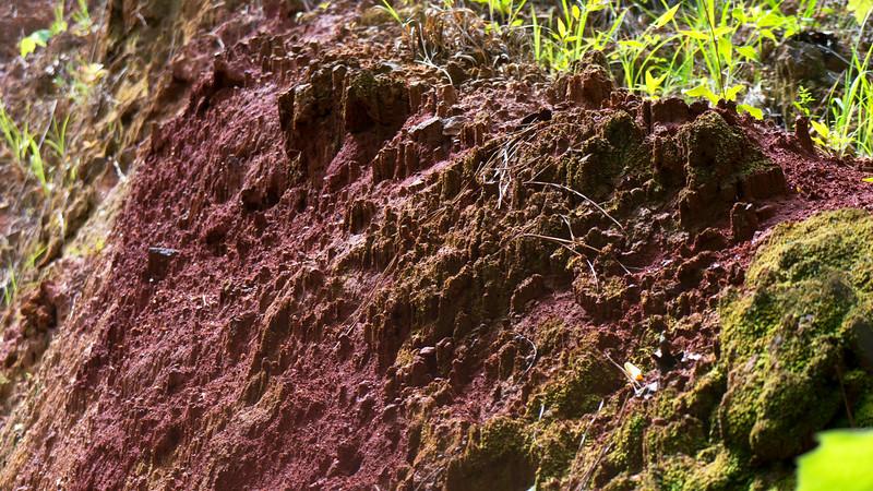 Manganese Pueblas