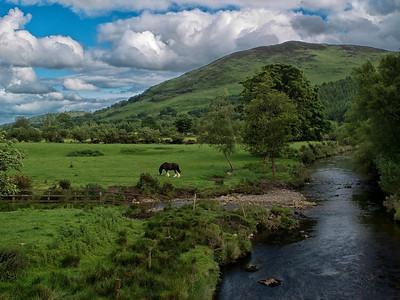 Irish countryside, 2013.